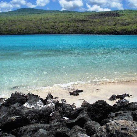 CM Travels | Isla Lobos