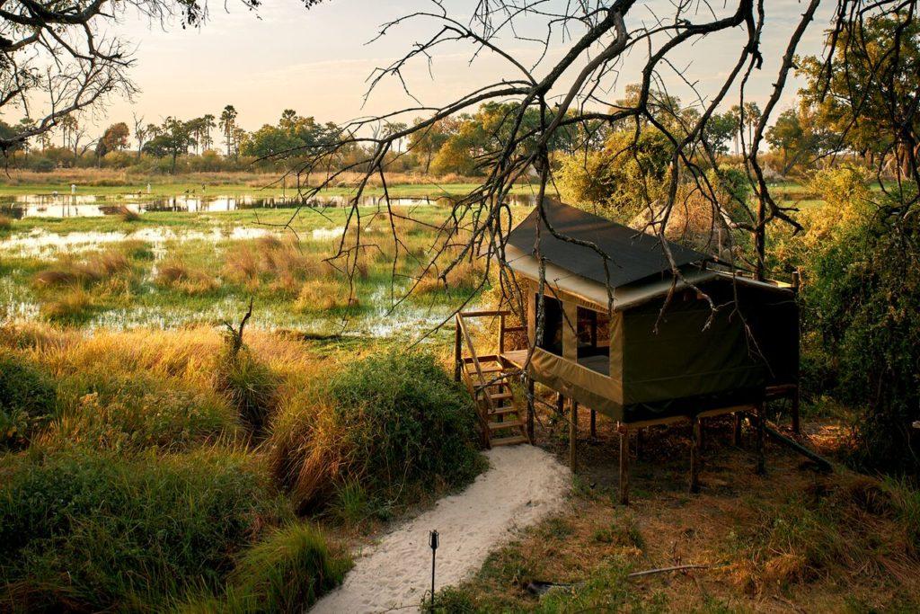 CM Travels   Botswana   Oddballs Camp 5