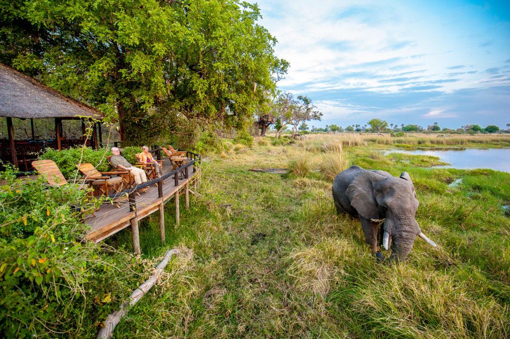 CM Travels   Botswana   Delta Camp 3