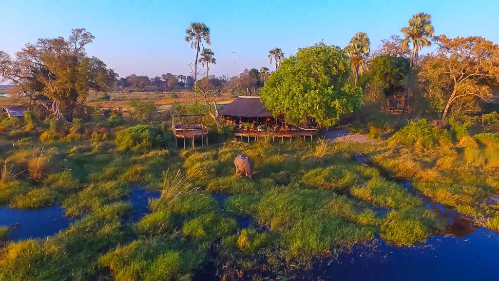 CM Travels   Botswana   Delta Camp 1